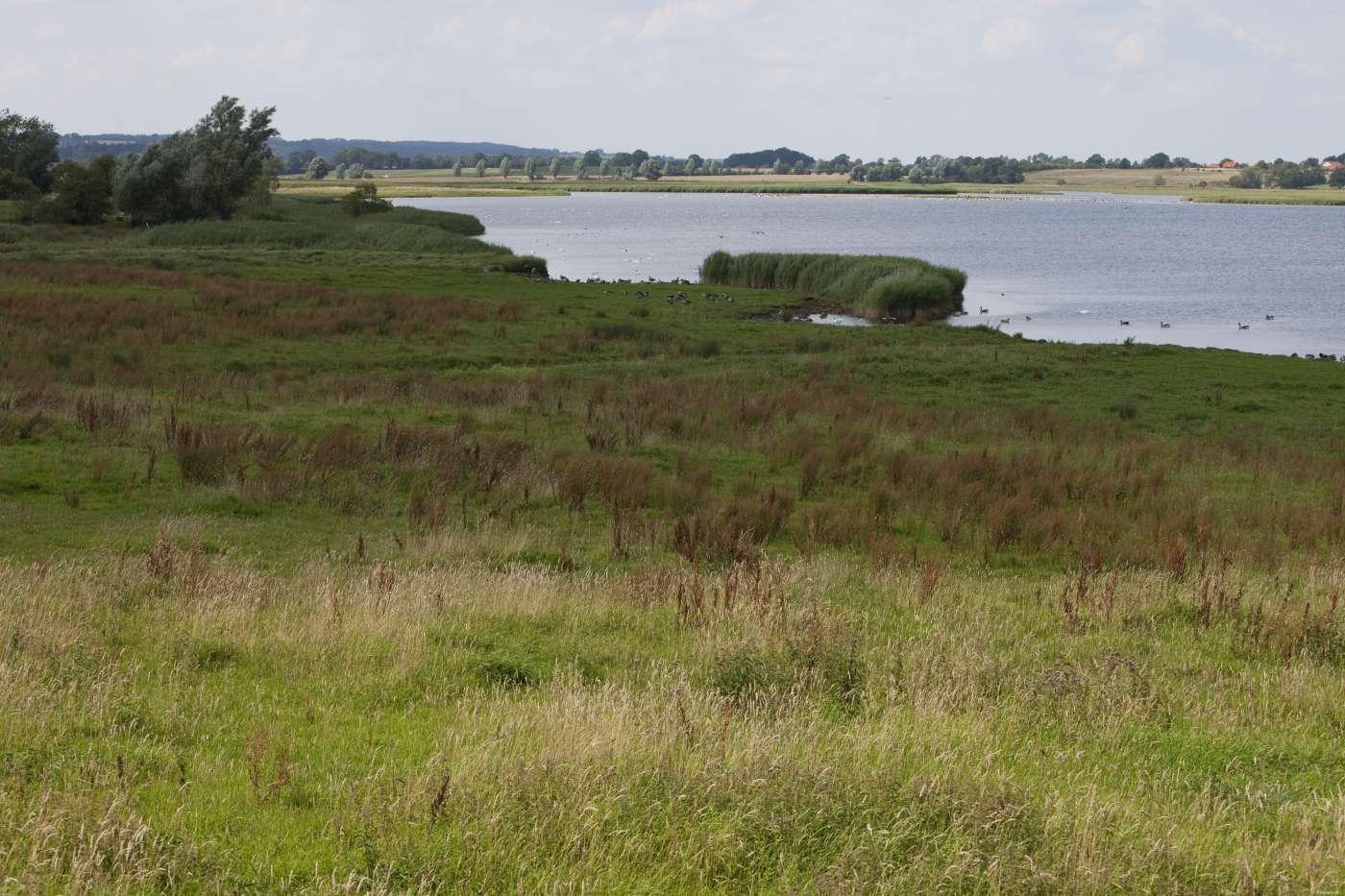 Wo Liegt Schwanitz Ostsee Karte.Wusstest Du Schon Ostsee Schleswig Holstein